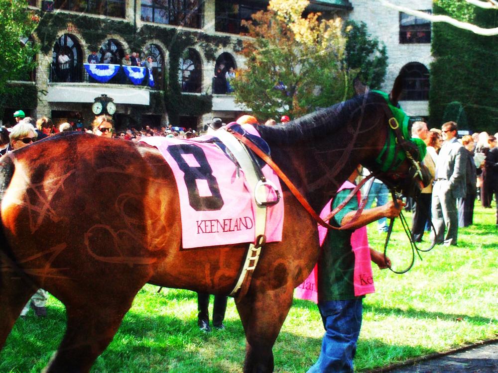 Keeneland Horse photo